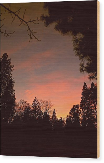 Sunset In Winter Wood Print