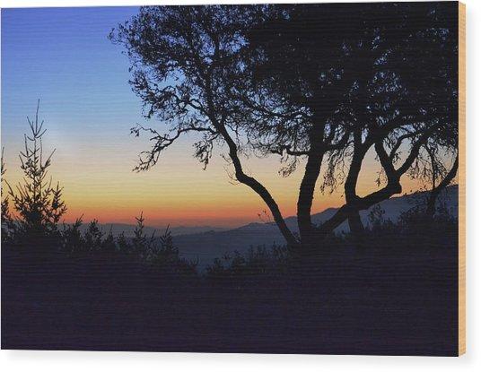 Sunset In Woodside  Wood Print