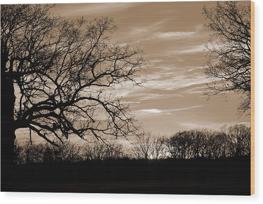 Sunset Is Sepia  Wood Print