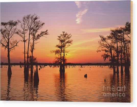 Sunset Lake In Louisiana Wood Print