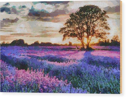 Sunset Lavender Field Wood Print