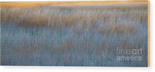Sunset Marsh In Blue And Gold Wood Print