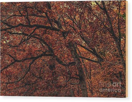 Sunset Oaks 2 Wood Print