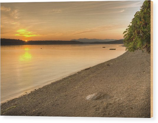 Sunset Olympic Peninsula, Washington Wood Print