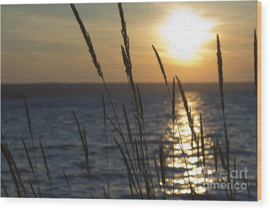 Sunset On Cayuga Lake Wood Print