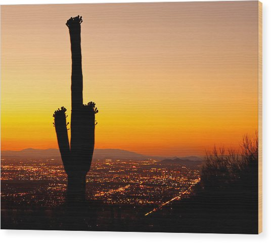 Sunset On Phoenix With Saguaro Cactus Wood Print