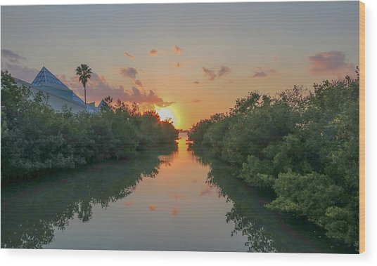 Sunset On Sarasota Bay Wood Print
