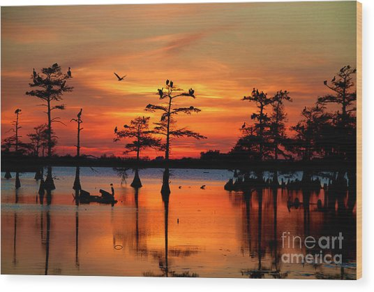 Sunset On The Bayou Wood Print