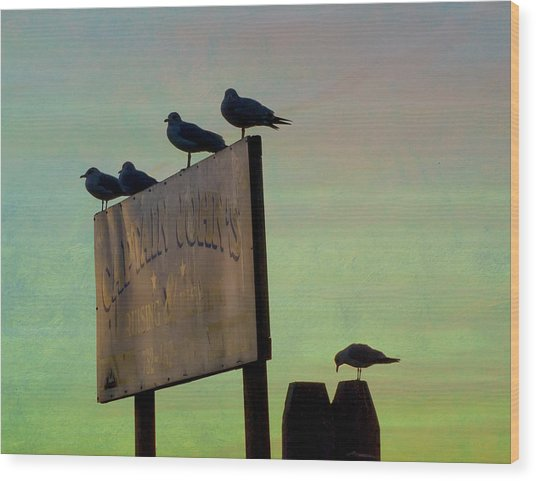 Sunset On The Sign Wood Print
