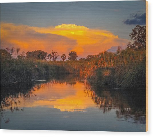 Sunset Over Camp Sandibe Wood Print