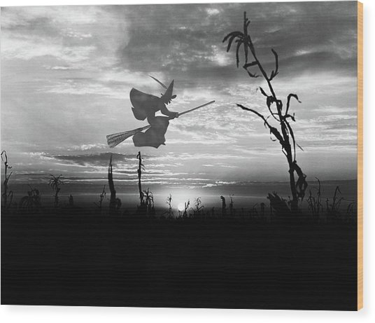 Sunset Over Cornfield With Silhouette Wood Print