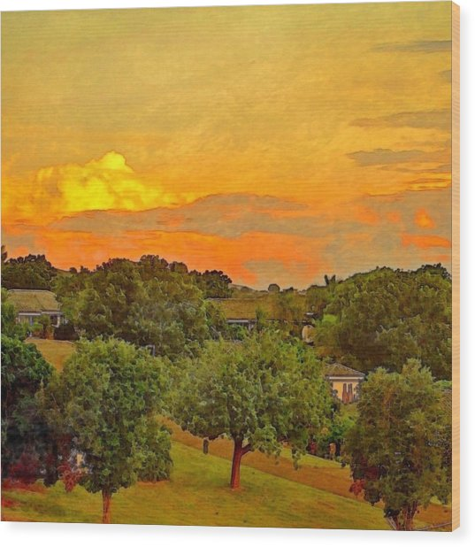Sunset Over Orchard - Square Wood Print