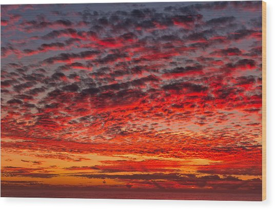 Sunset Over Saunder's Reef Wood Print