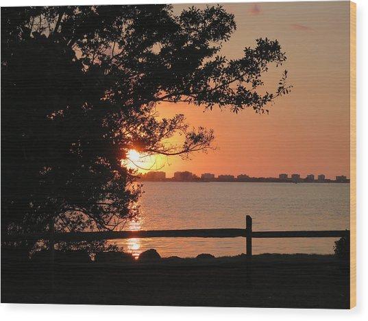 Sunset On Sarasota Harbor Wood Print