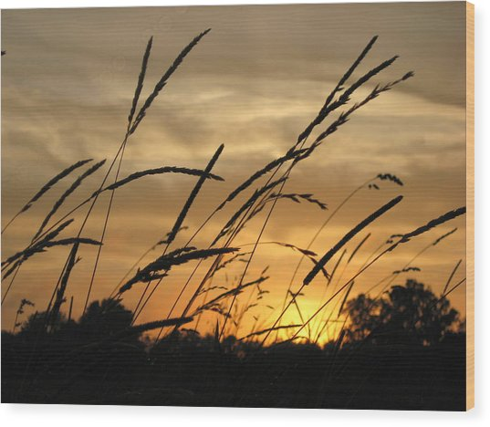 Sunset Sentinels Wood Print