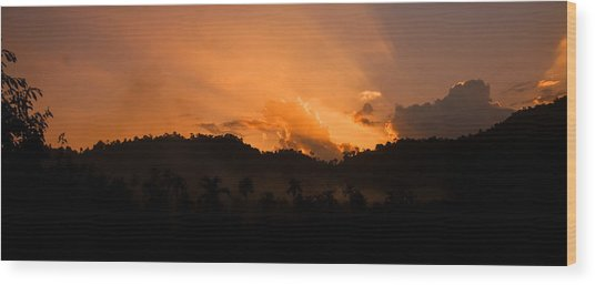Sunset Silhouette Wood Print by Kim Lagerhem