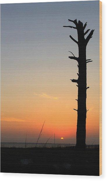 Sunset Silhouette Wood Print by Saya Studios