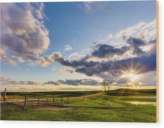 Sunset Sonata Wood Print
