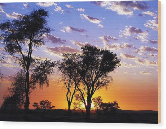 Sunset Splendour Wood Print by Liudmila Di