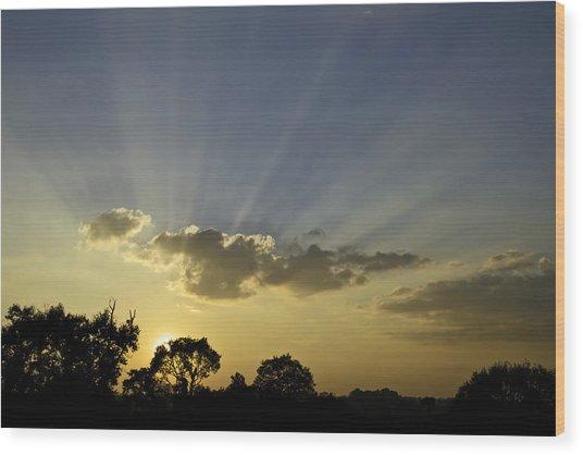 Sunset Sunrays Wood Print