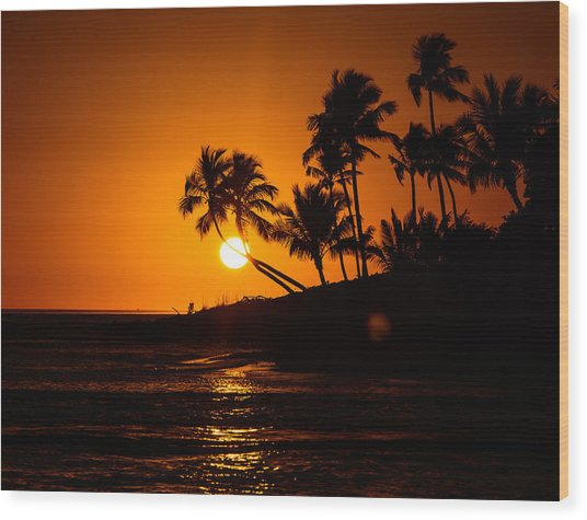 Sunset Through The Palm Trees Wood Print