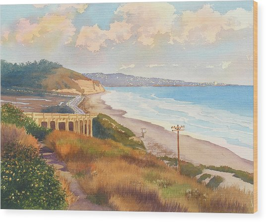 Sunset View Of Torrey Pines Wood Print