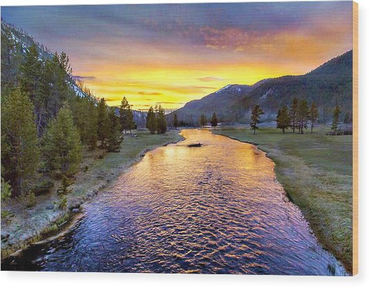 Sunset Yellowstone National Park Madison River Wood Print