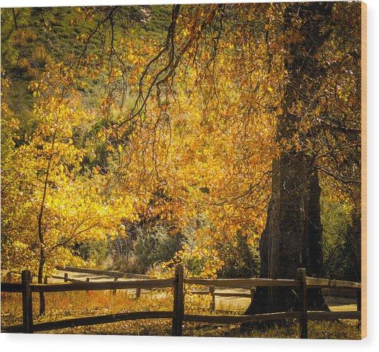 Sunshine Hwy Wood Print