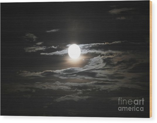 Super Moon 2013 Wood Print