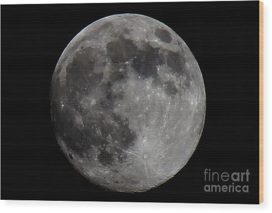 Super Moon 2014 Wood Print
