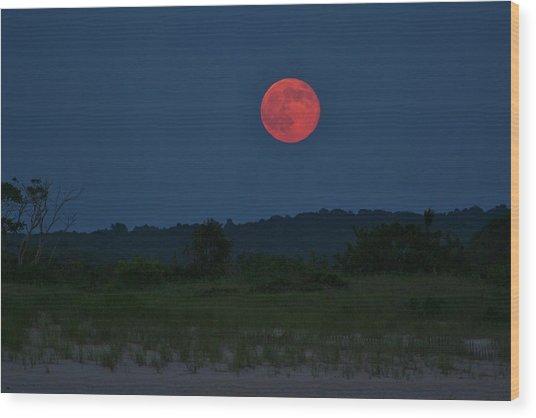 Super Moon July 2014 Wood Print