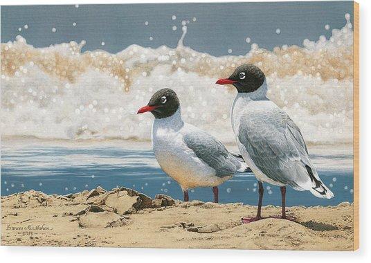 Surf 'n' Turf - Franklin's Gulls Wood Print