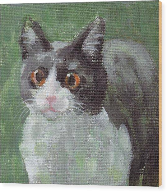 Surprised Cat Wood Print