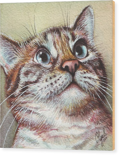 Surprised Kitty Wood Print