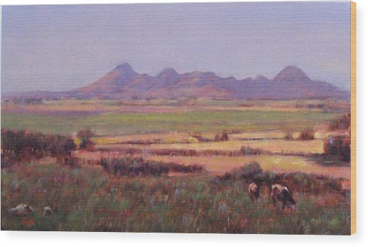 Sutter Buttes In Summer Afternoon Wood Print by Takayuki Harada