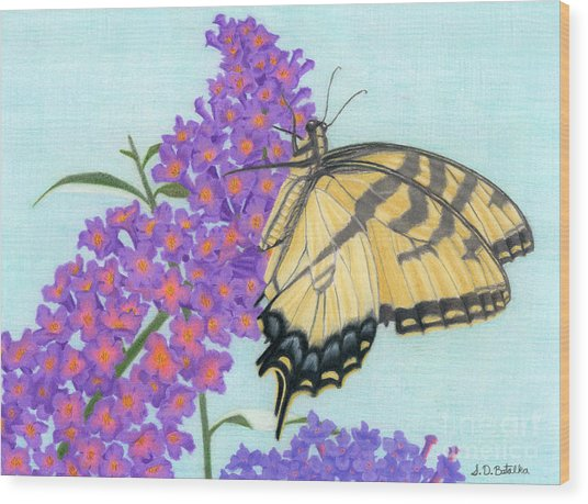 Swallowtail Butterfly And Butterfly Bush Wood Print