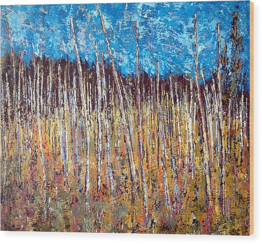 Swamp - Chamcook Nb Wood Print