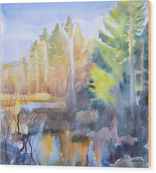 Swamp Color Wood Print