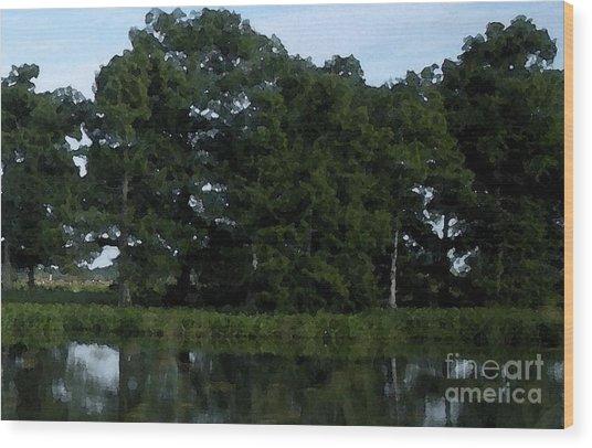 Swamp Cypress Trees Digital Oil Painting Wood Print