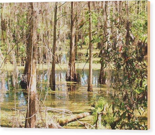 Swamp Wading 2 Wood Print by Van Ness
