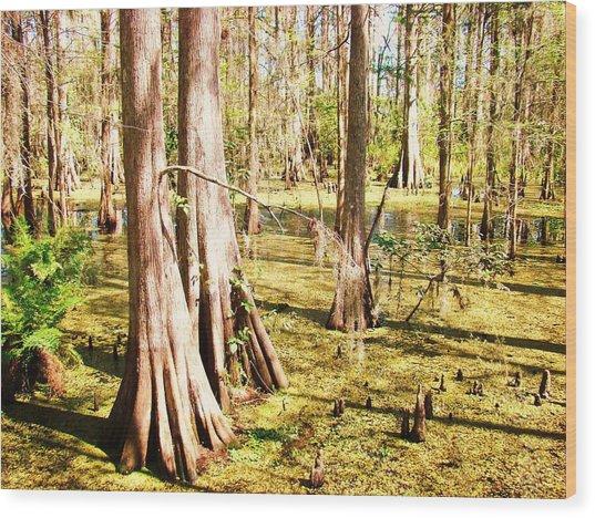 Swamp Wading 3 Wood Print by Van Ness