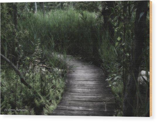 Swamp Walk Wood Print by Glenn Thompson
