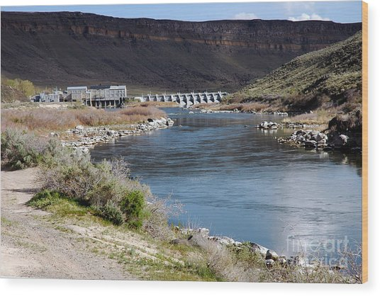 945a Swan Falls Dam Snake River Birds Of Prey Area Wood Print