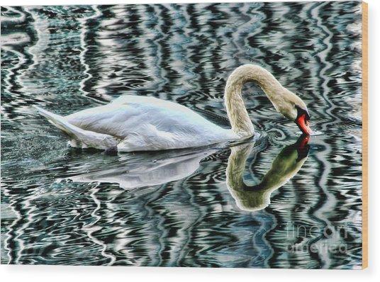 Swan On Lake Eola By Diana Sainz Wood Print