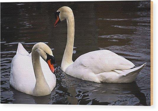 Swan Two Wood Print