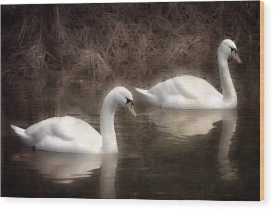 Swans For Life Wood Print