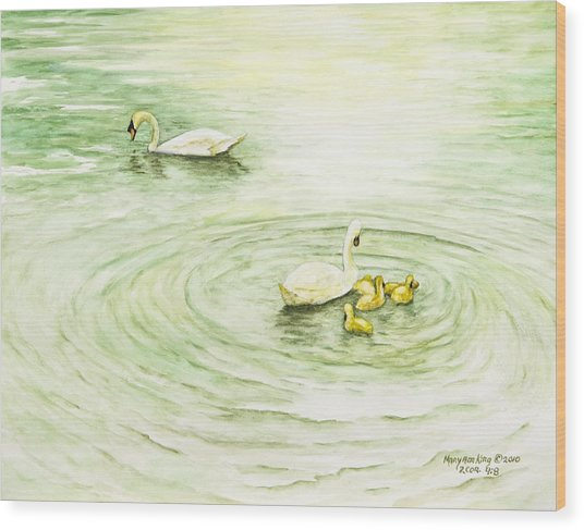 Swans In St. Pierre Wood Print