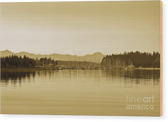 Swantown Marina And The Olympics In Sepia Wood Print