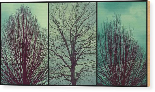 Sweep The Sky Wood Print
