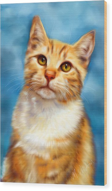 Sweet William Orange Tabby Cat Painting Wood Print